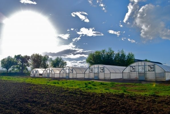 WAAYB Farms Hoop Houses